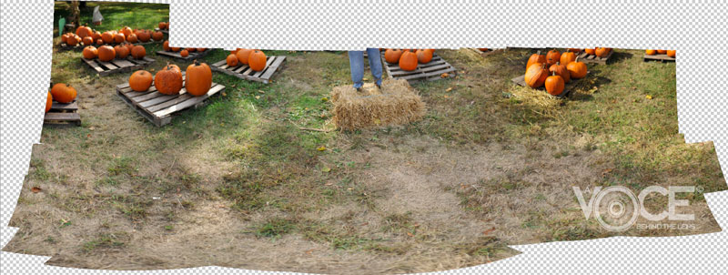 Scarecrow - Photomerge Part 2